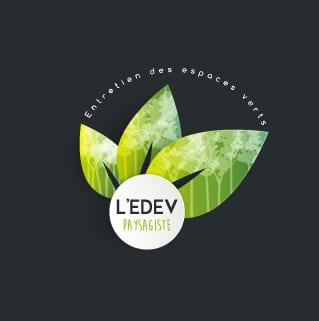 Presentation logo edev black