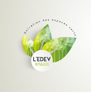 Presentation logo edev light