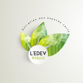 Presentation logo edev light